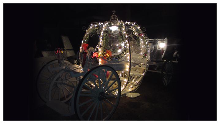 Horse Drawn Cinderella Carriage