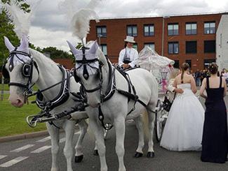 horse-drawn-prom