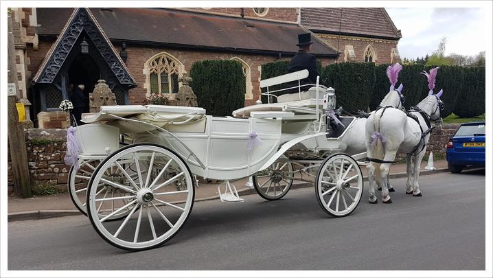 White Landau Carriage