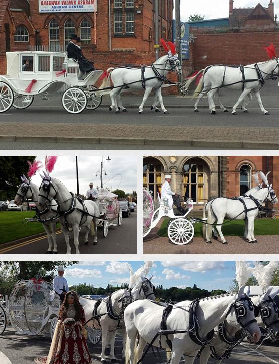 Horsedrawn Occasions Cultural Wedding Horses